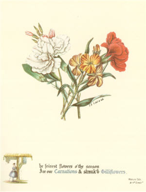 Figure 6. The fairest flowers o' the Season Are our Carnations & Streak'd Gilliflowers